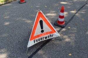 EB 66-2015 Verkehrssicherung an den Martinsumzügen in Bad Bellingen, Rheinweiler, Bamlach