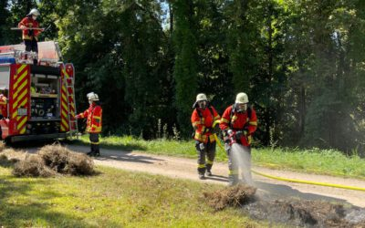 EB 41 – 2021 Brand Wald / Fläche